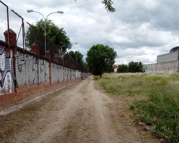 camino peatonal